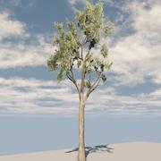 Gum tree cross 3d model