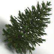크리스마스 트리 01 3d model