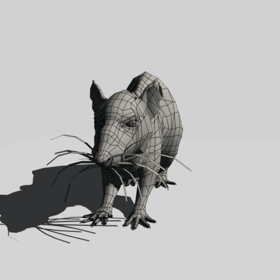 Råtta royalty-free 3d model - Preview no. 10