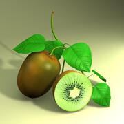 Obst Kiwi 3d model