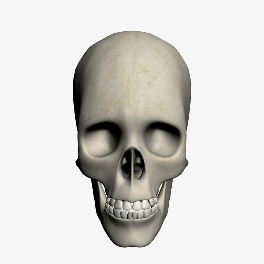 İnsan kafatası royalty-free 3d model - Preview no. 2