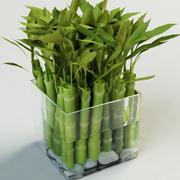 竹子竹 3d model