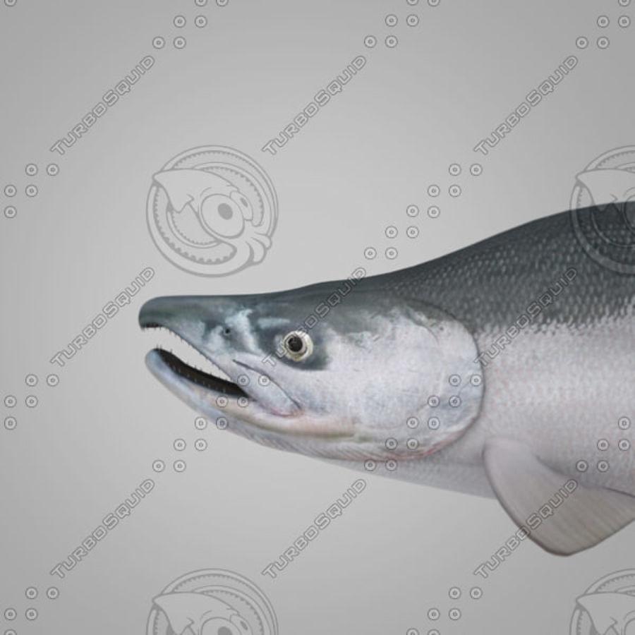 sockeye - salmone royalty-free 3d model - Preview no. 1