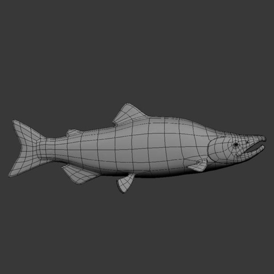 sockeye - salmone royalty-free 3d model - Preview no. 7