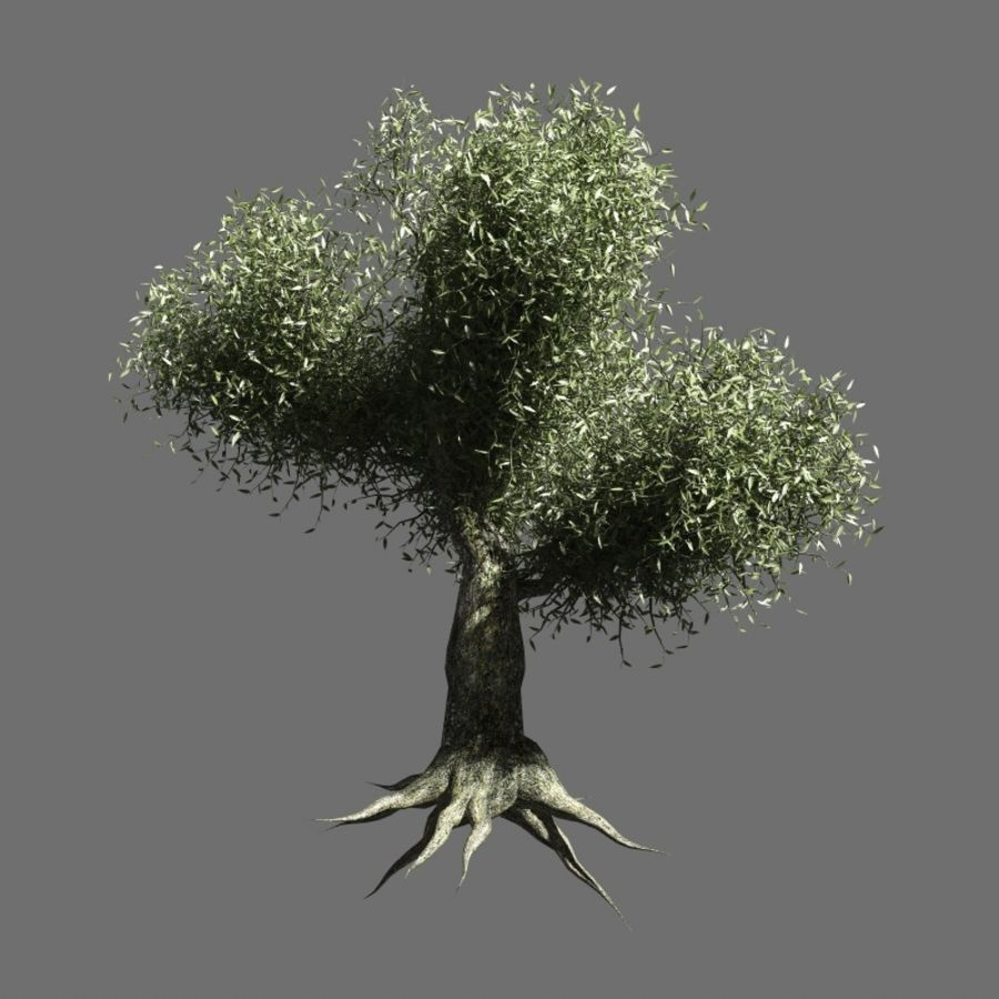 Olivier 2 royalty-free 3d model - Preview no. 2