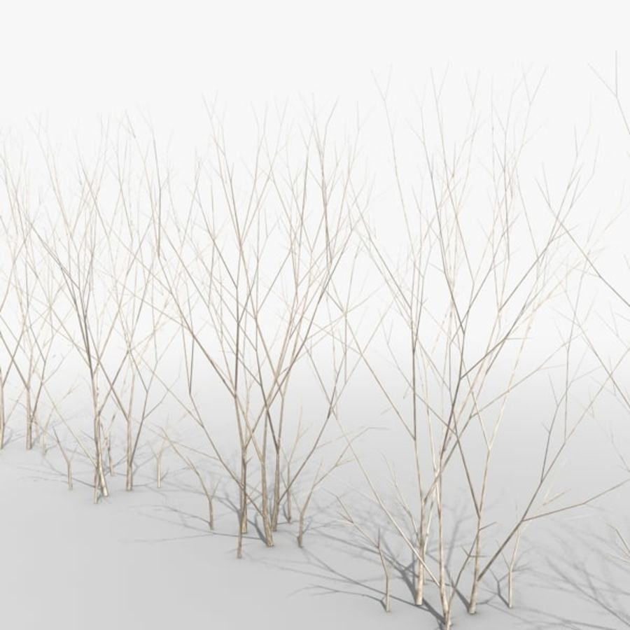Crowded Common Beech Hedge royalty-free 3d model - Preview no. 1