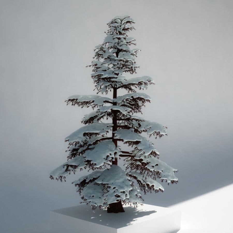 雪の木 royalty-free 3d model - Preview no. 3