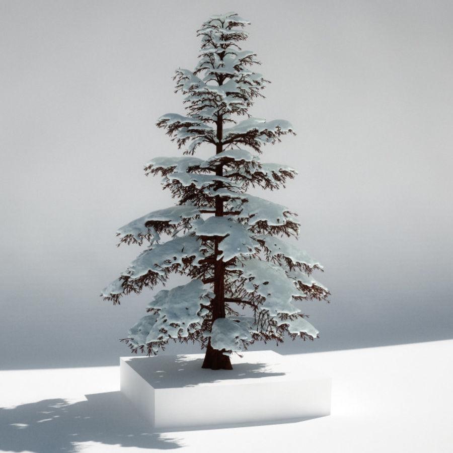 雪の木 royalty-free 3d model - Preview no. 1