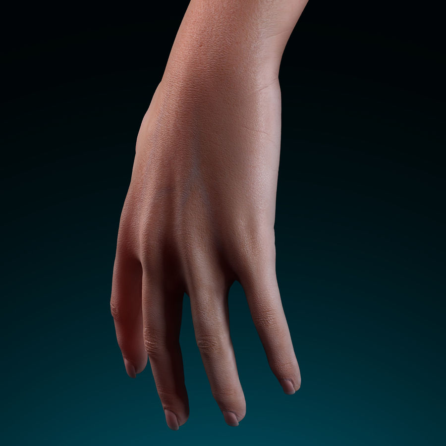 Female Arm royalty-free 3d model - Preview no. 4