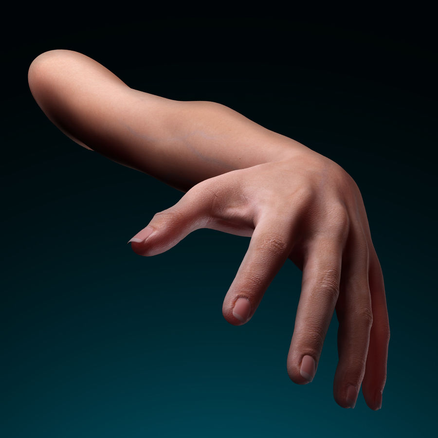 Female Arm royalty-free 3d model - Preview no. 9