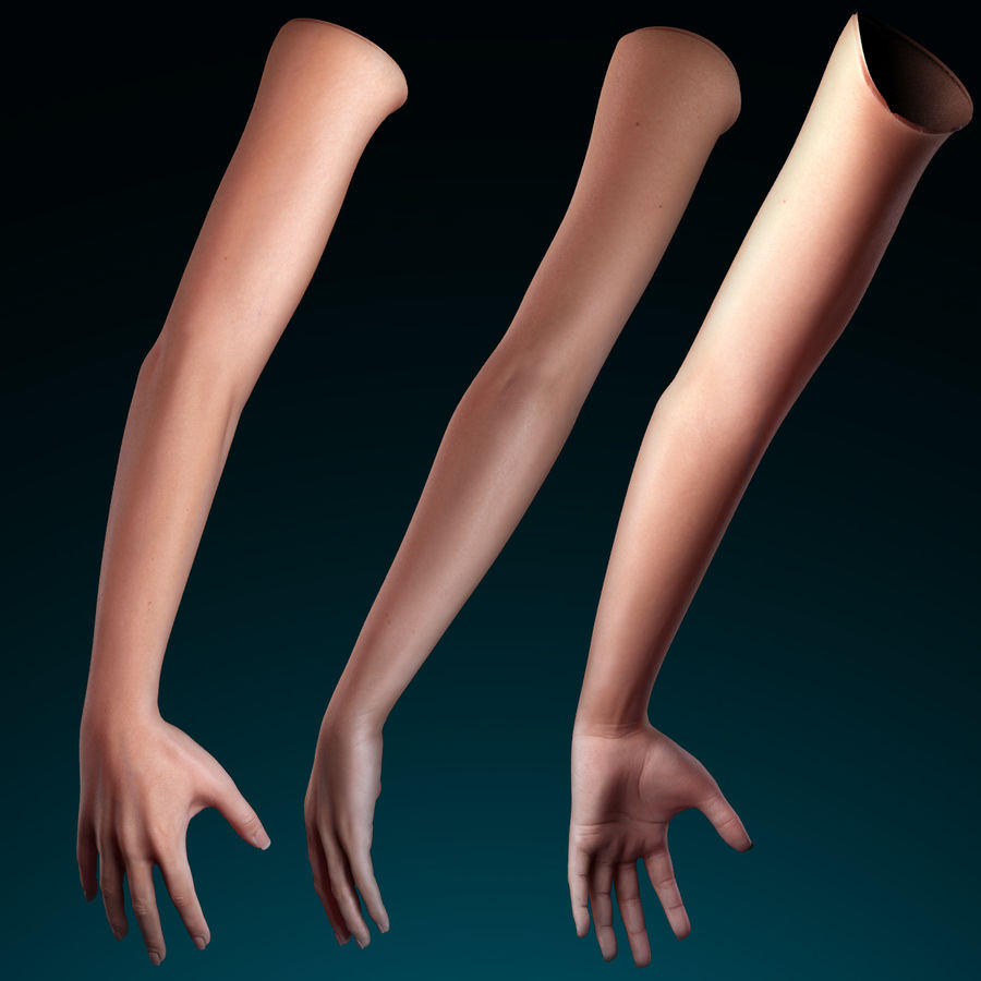Female Arm royalty-free 3d model - Preview no. 7