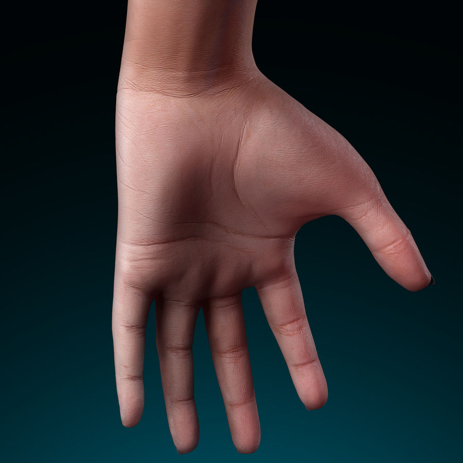 Female Arm royalty-free 3d model - Preview no. 5