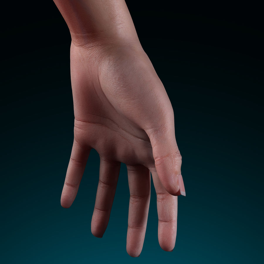 Female Arm royalty-free 3d model - Preview no. 6
