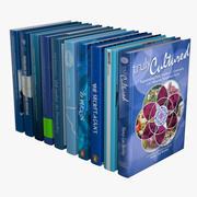 Mavi Kitaplar 3d model
