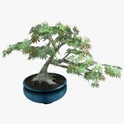 盆栽 3d model