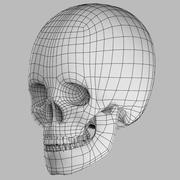 现实的头骨 3d model