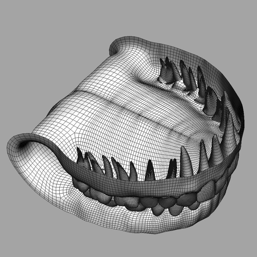 Teeth and Gums royalty-free 3d model - Preview no. 12