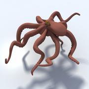 Giant Pacific Octopus 3d model