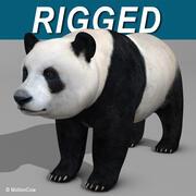 Panda Bär 3d model