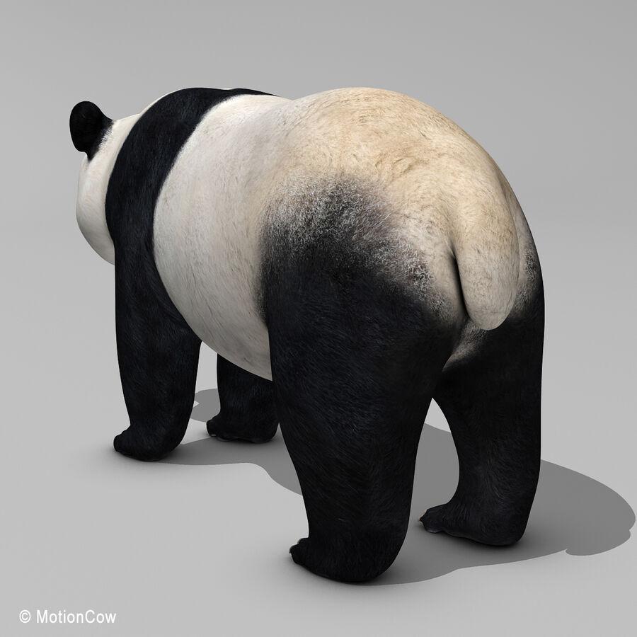 Urso panda royalty-free 3d model - Preview no. 12