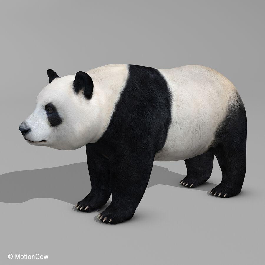 Urso panda royalty-free 3d model - Preview no. 3