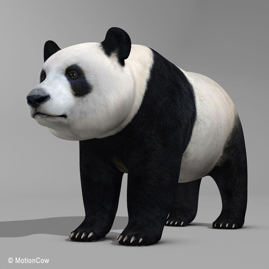 Urso panda royalty-free 3d model - Preview no. 2