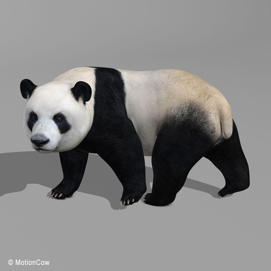 Urso panda royalty-free 3d model - Preview no. 11