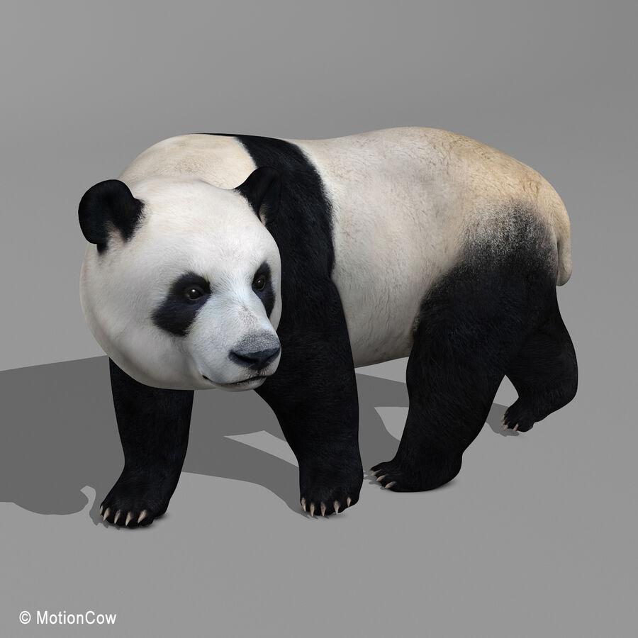 Urso panda royalty-free 3d model - Preview no. 10