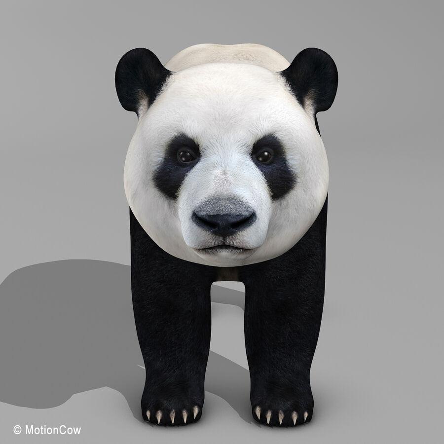 Urso panda royalty-free 3d model - Preview no. 5