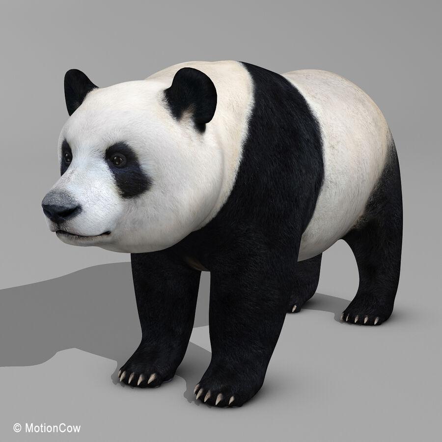 Urso panda royalty-free 3d model - Preview no. 6