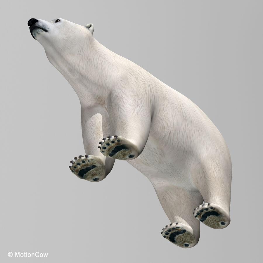 Urso polar royalty-free 3d model - Preview no. 13