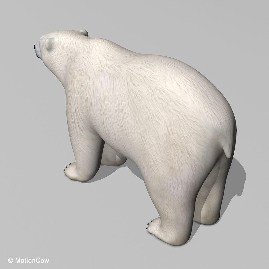 Urso polar royalty-free 3d model - Preview no. 11