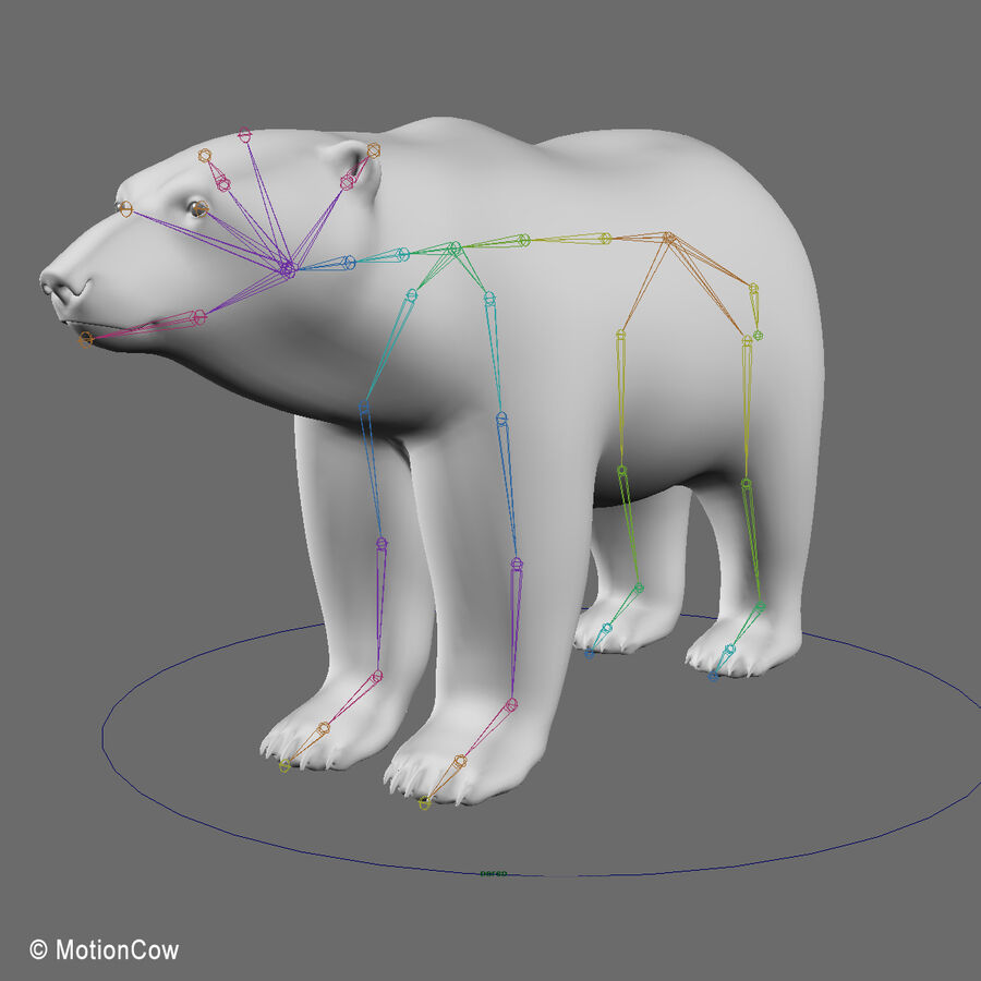 Urso polar royalty-free 3d model - Preview no. 17