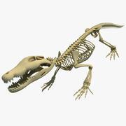 Szkielet krokodyla 3d model
