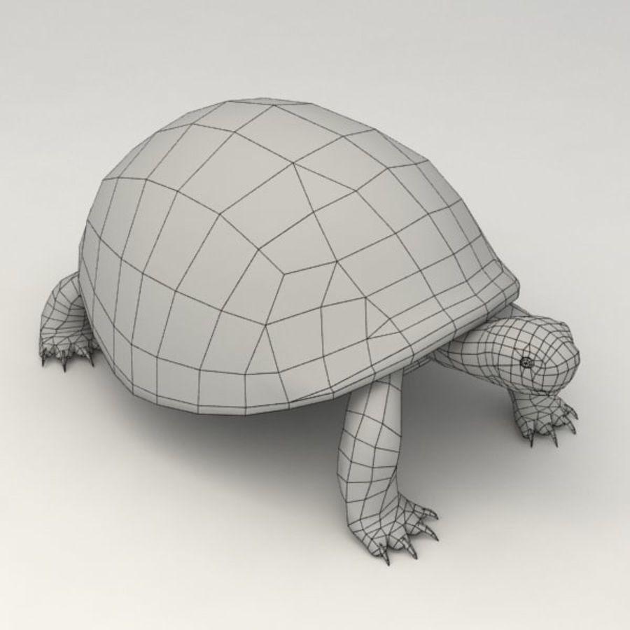 Черепаха сфальсифицирована royalty-free 3d model - Preview no. 8