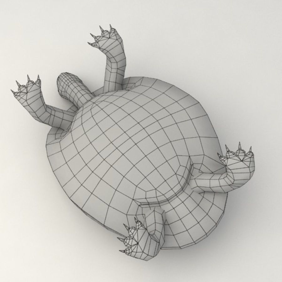 Черепаха сфальсифицирована royalty-free 3d model - Preview no. 10