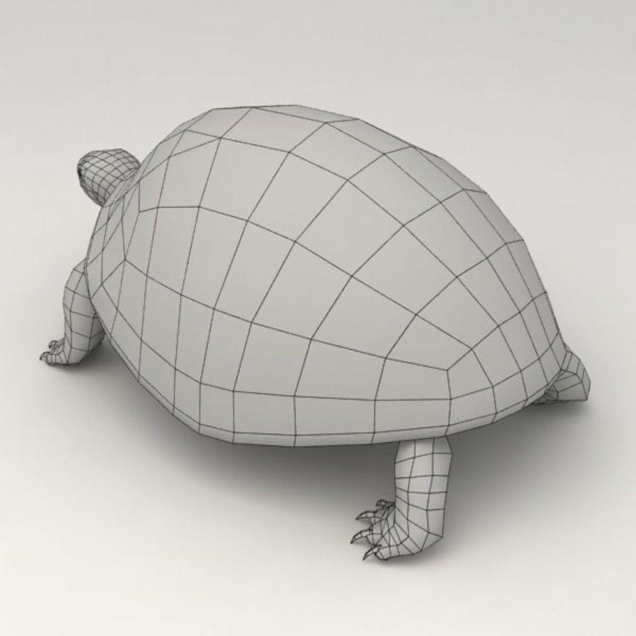 Черепаха сфальсифицирована royalty-free 3d model - Preview no. 9