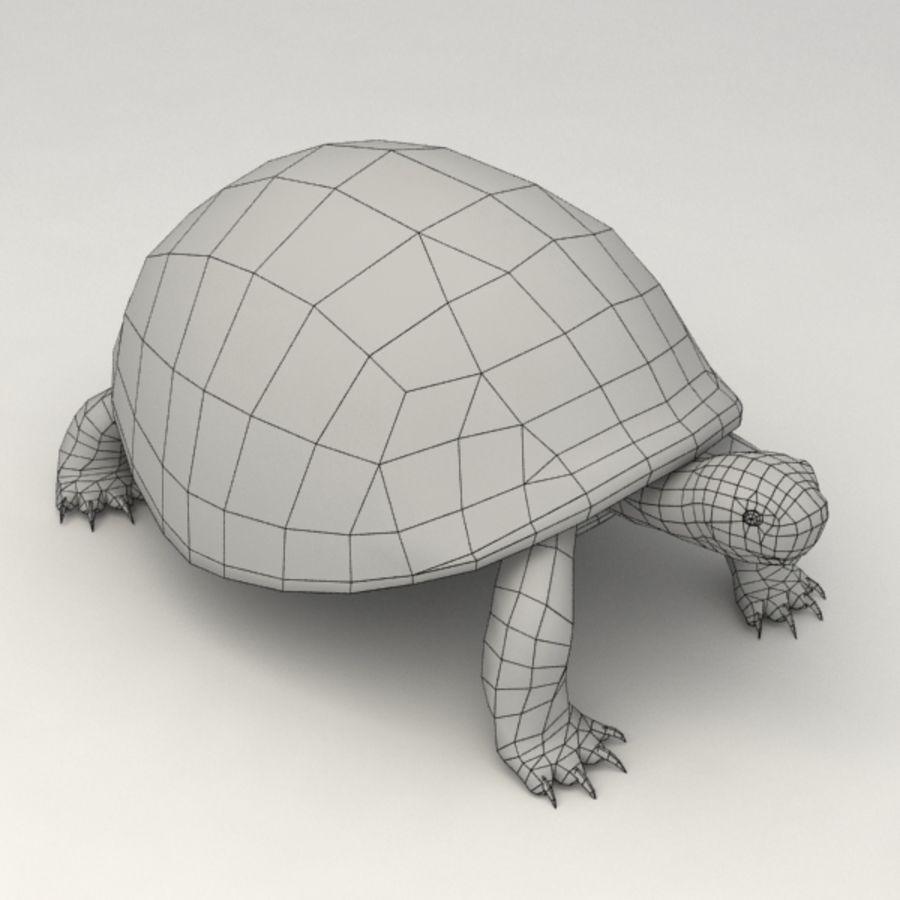 Tortuga aparejada royalty-free modelo 3d - Preview no. 8