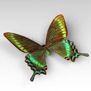 Butterfly 10 3d model