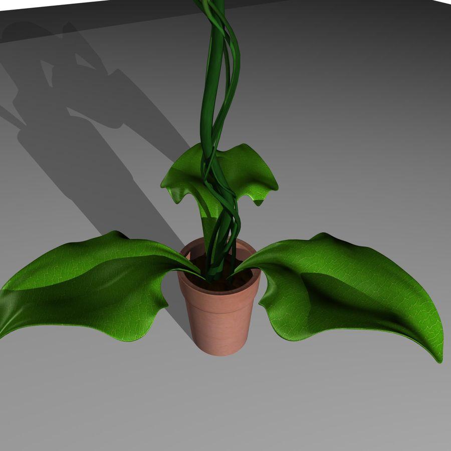 plantar royalty-free 3d model - Preview no. 6