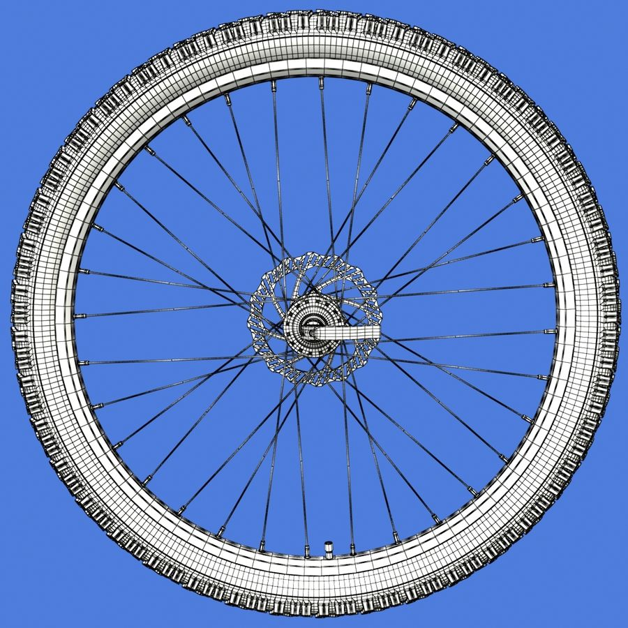 Mountain Bike Wheels + Tires royalty-free 3d model - Preview no. 19