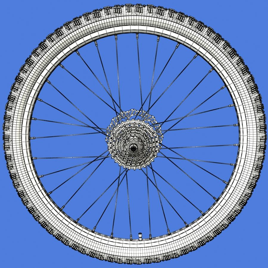 Mountain Bike Wheels + Tires royalty-free 3d model - Preview no. 19