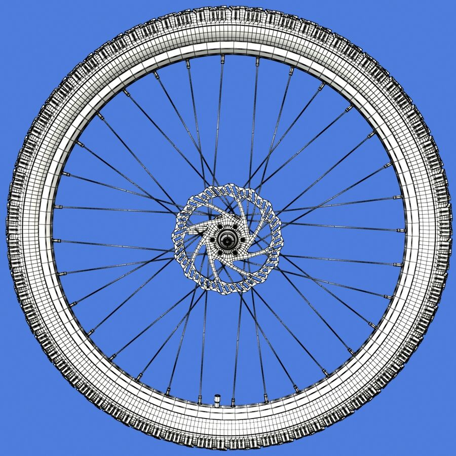 Mountain Bike Wheels with Tires royalty-free 3d model - Preview no. 18