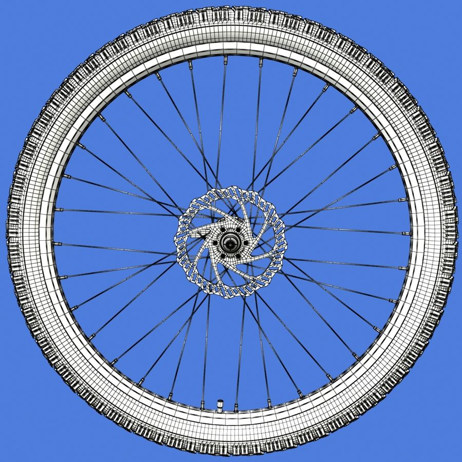 Mountain Bike Wheels + Tires royalty-free 3d model - Preview no. 18