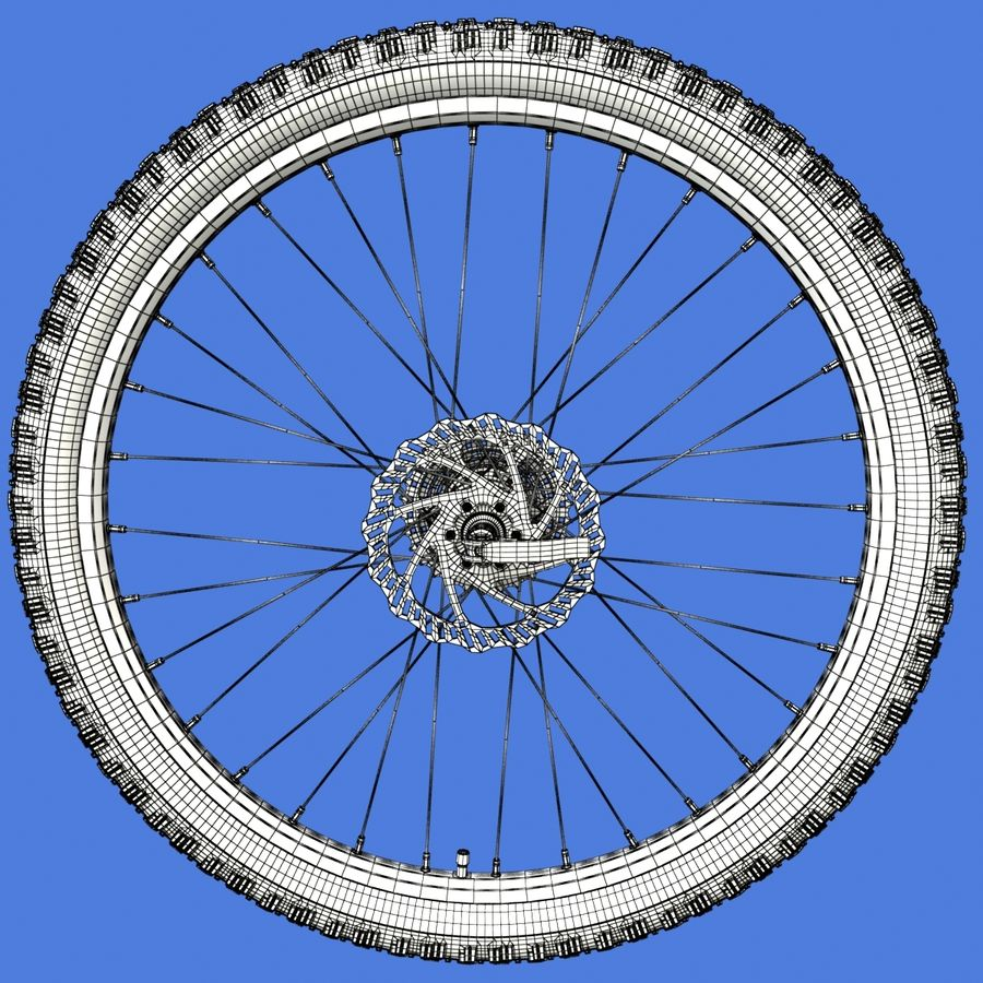 Mountain Bike Wheels + Tires royalty-free 3d model - Preview no. 16