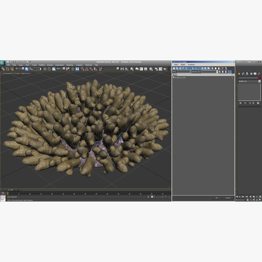 Acropora Coral royalty-free 3d model - Preview no. 9