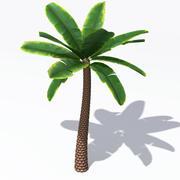 Palme 3d model