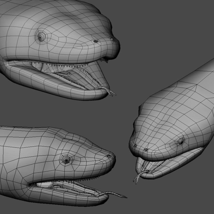 Anaconda royalty-free 3d model - Preview no. 8