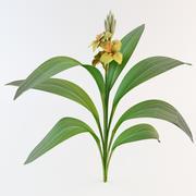 Fleur de lis 3d model