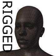 RIGGED Young Black Woman Base Mesh 3d model